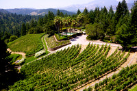 5113_AMP_Teachworth Winery_Napa Valley_CA_2012