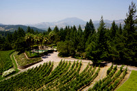 5115_AMP_Teachworth Winery_Napa Valley_CA_2012